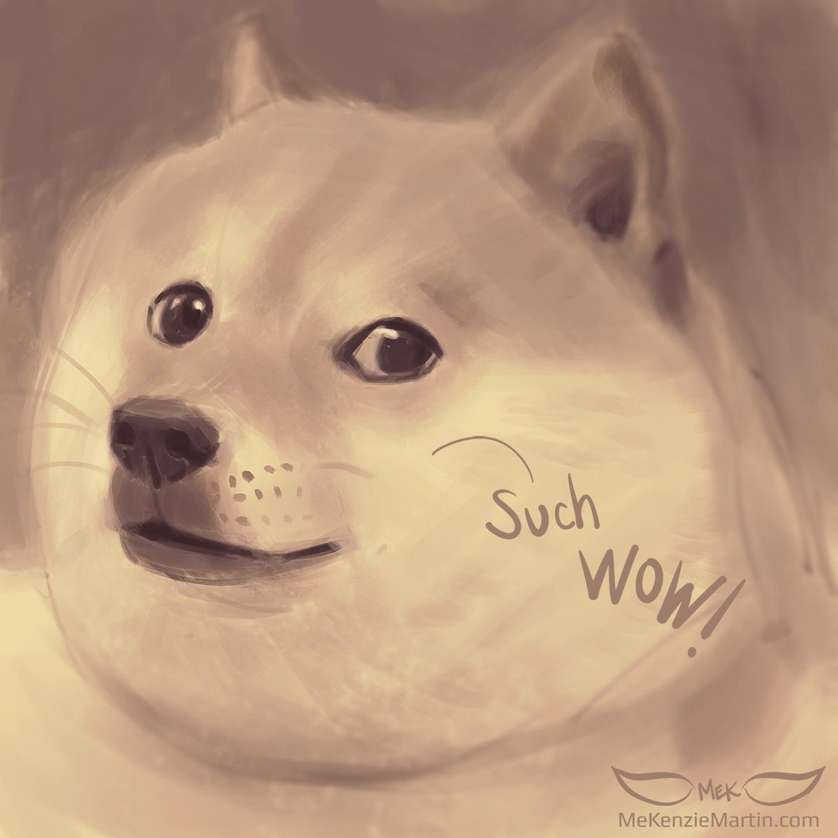 Doge wow intensifies