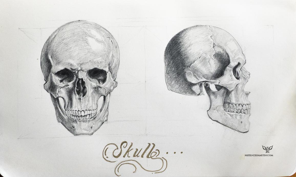 Study: Skull 2 by DM7