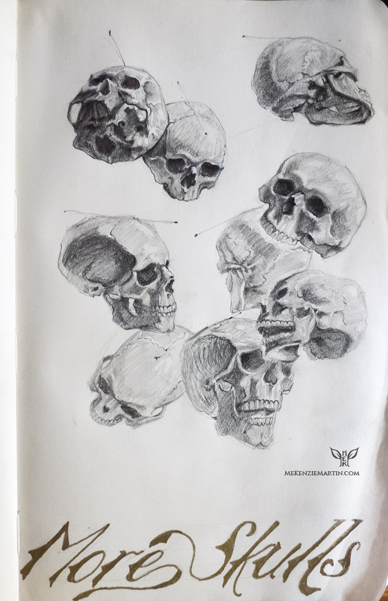 Study: More Skulls by DM7