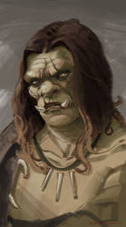 Speed Painting: Ugly Orc with Sexy Hair by DM7