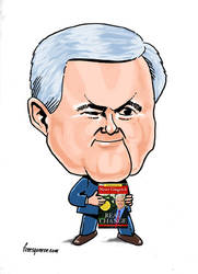 Newt Gingrich by freesqueeze
