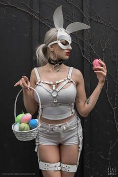 .: White Rabbit :.