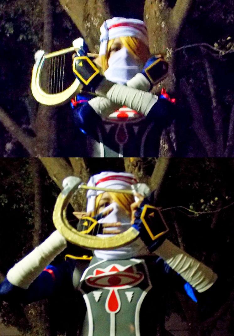 Sheik Harp - Hyrule Warriors by MelodyZombie