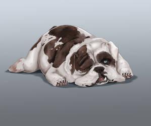 Grouchy bulldog-speedpaint