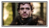 GoT:Robb Stark Stamp by kiananuva12
