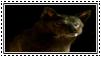 GoT:Shaggydog Stamp by kiananuva12