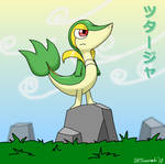 Snivy: Lean, Mean and Green