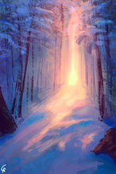 Snow under a magical light by RobertoGatto