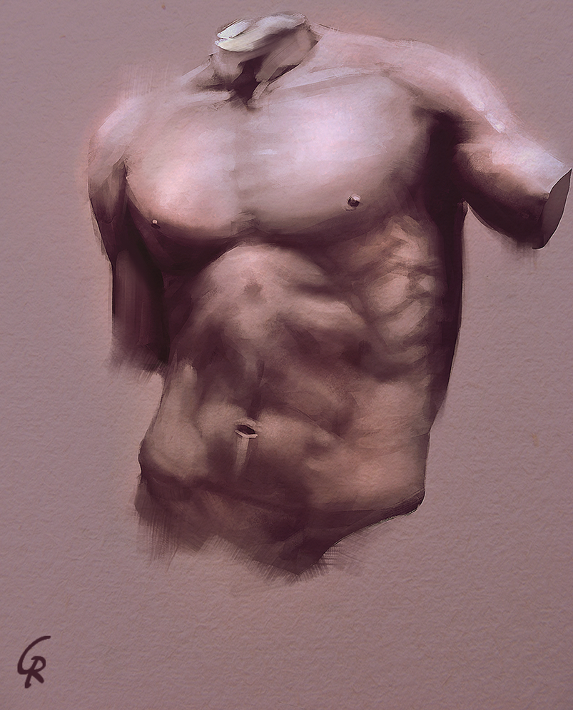 torso_study_by_robertogatto-d8mukbh.png