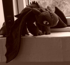 Toothless Plush (After adding more stuffing)