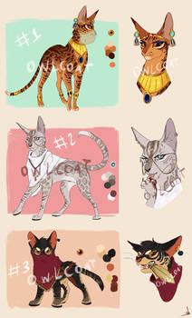 Warrior Cat Adoptables [CLOSED]
