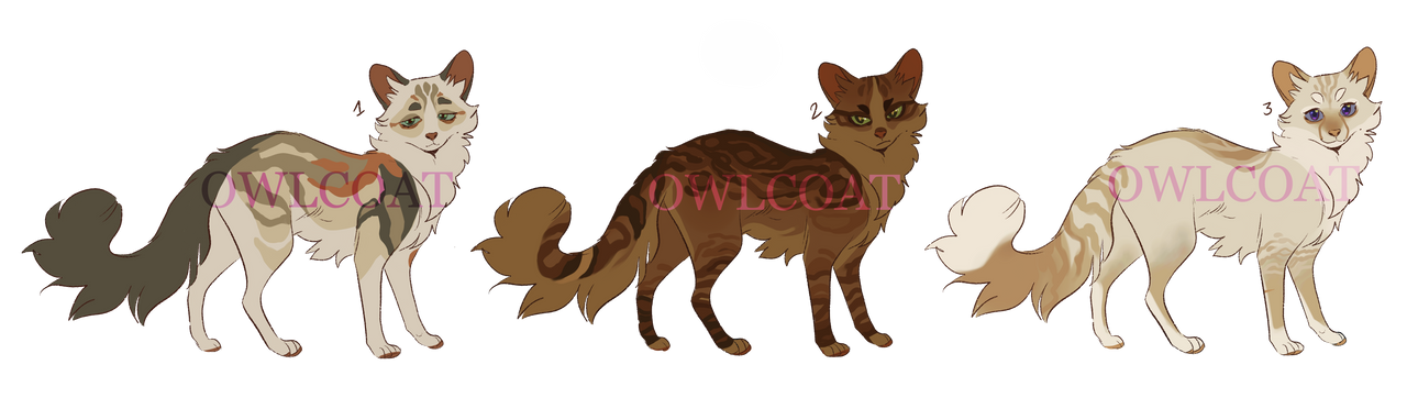[CLOSED] Warrior Cats Adoptables