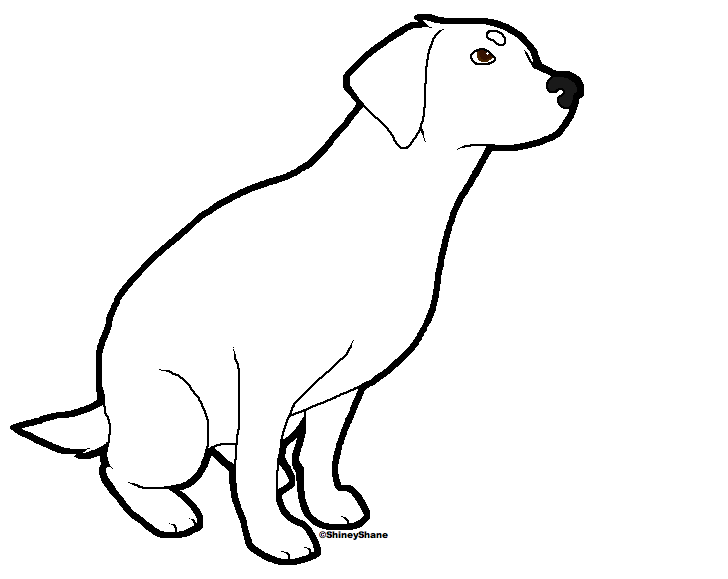 The gallery for black lab line drawing for Black lab coloring pages