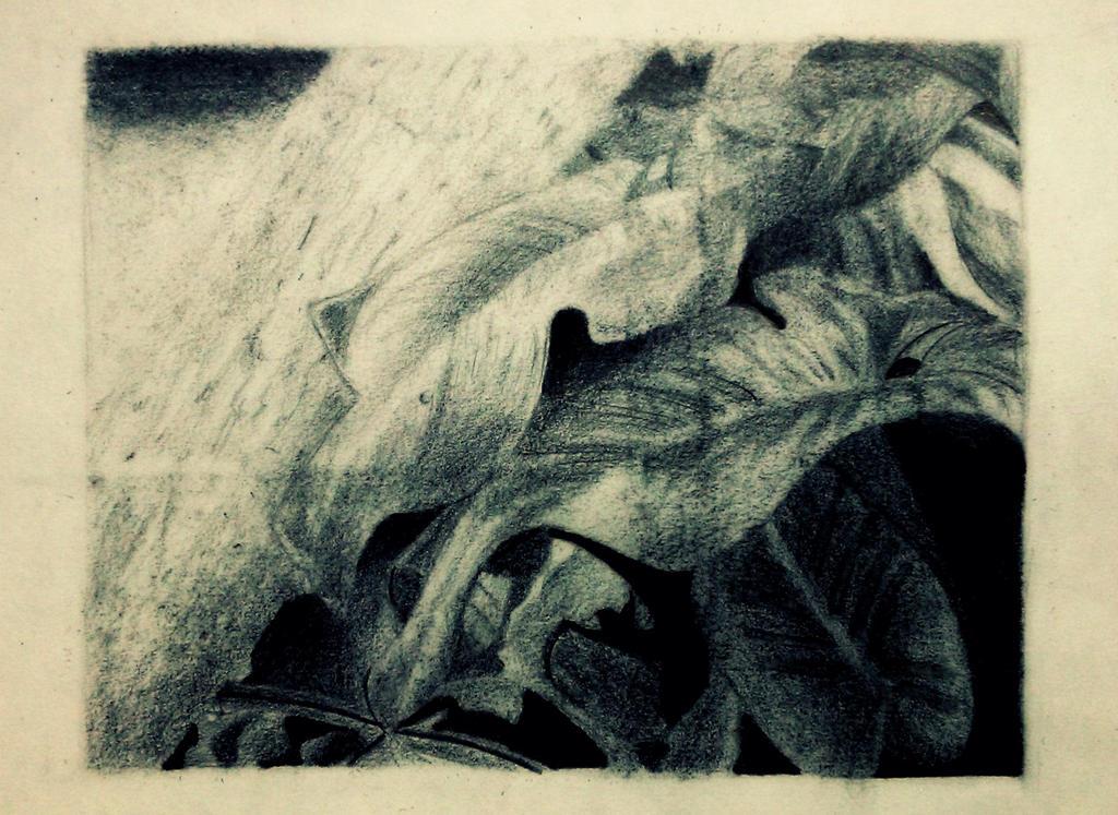 Leaves by MMonn-ks