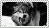 Wild Wolf Stamp by cc-10470