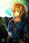 Link -  Zelda Breath of the Wild 2016