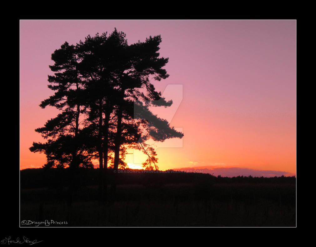 Sunset 3 by DragonflyPrincess
