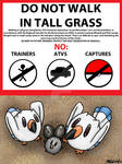 PKMN-ORAS Hype--Please Don't Step on the Wingull by Dr-Kineil-Wicks