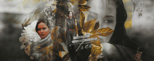 Signature: The Hanging Tree