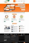 Web Design and Development Company Layout