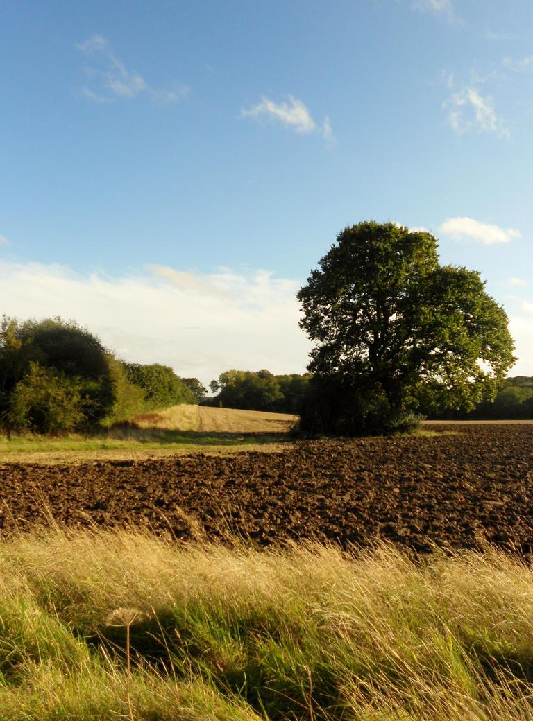 rural by lozzyozzy333