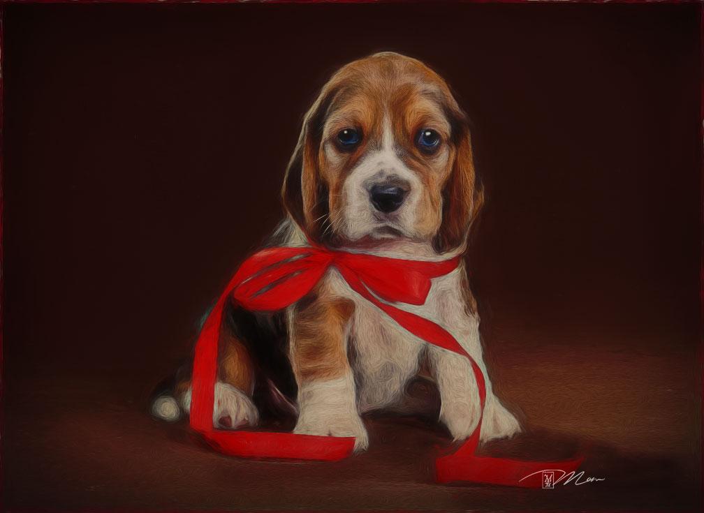 Puppybymom by mom64