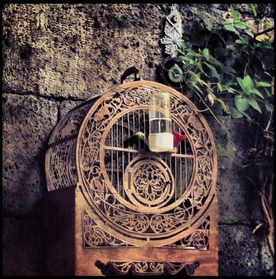 Love Cage by GirlinTranslation