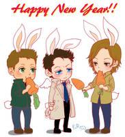 Lunar New Year's Day by glaringstar