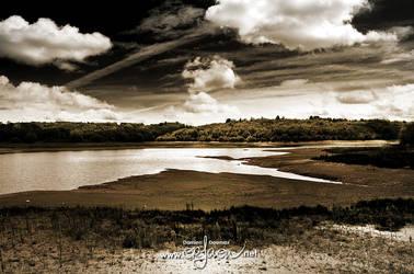 The quiet lake pt. 3