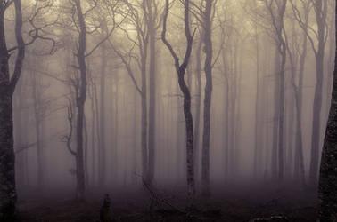 Veiled consciousness by kil1k