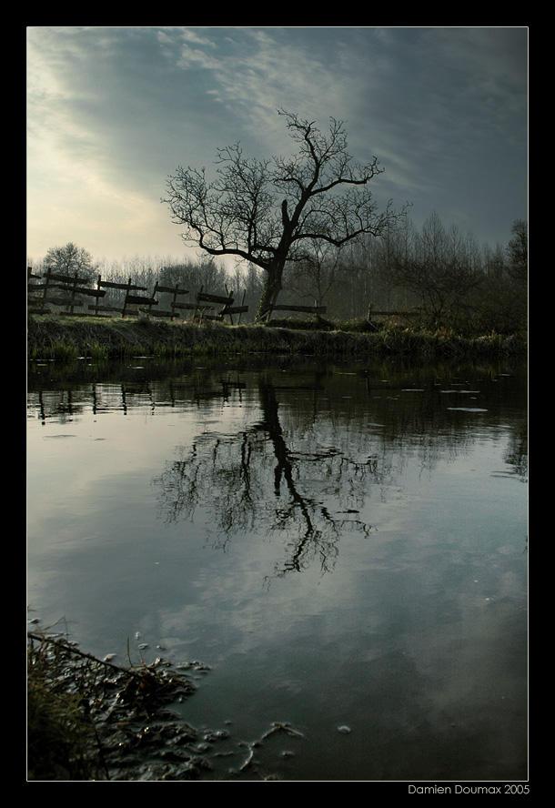 Narcissic Sadness by kil1k