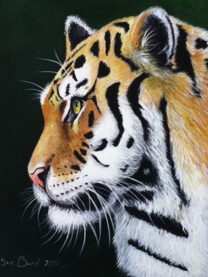 acrylic painting by donnabe on DeviantArt