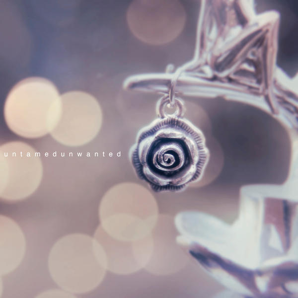 Silver Rose by UntamedUnwanted