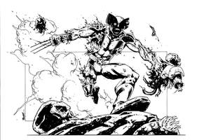 Wolverine, zombie style. by terrypallot