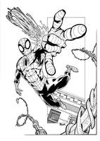 Swingin' Spidey! by terrypallot