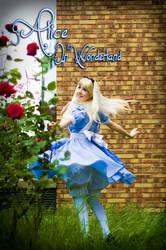 Alice in wonderland 3 by clefchan