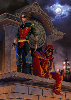 Flash and robin