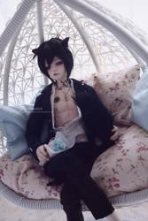 Suzaku - cat butler by darknaito