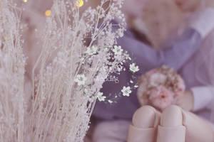 Happy Wedding, Suzaku and Kikyou