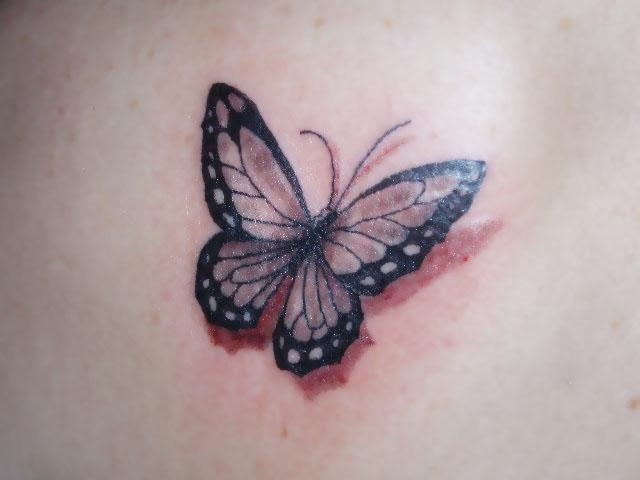Butterfly by toe-art