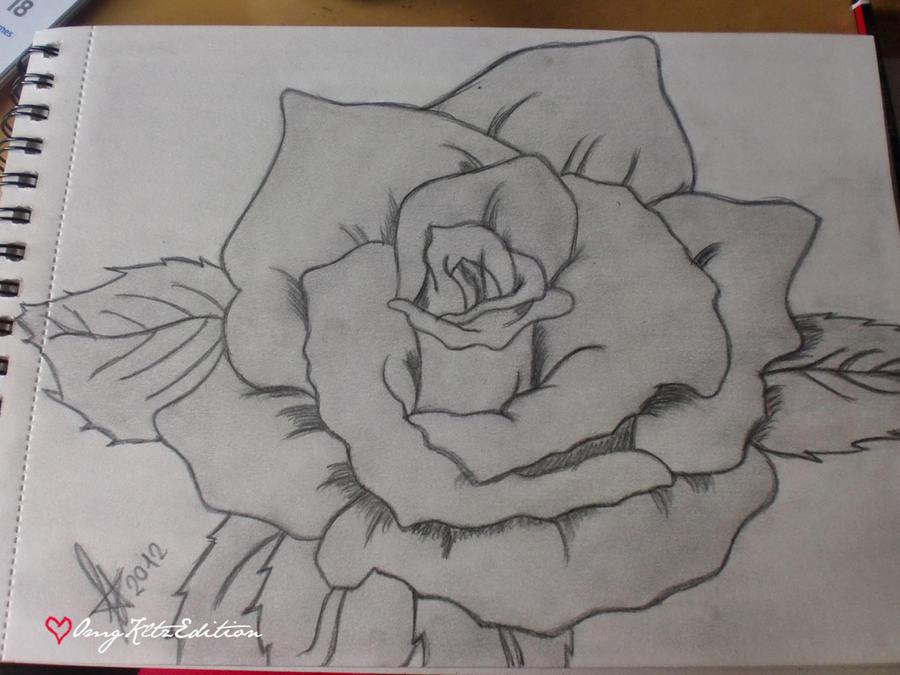 Dibujos De Rosas a Lapiz