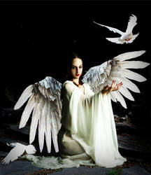 Archangelic Message