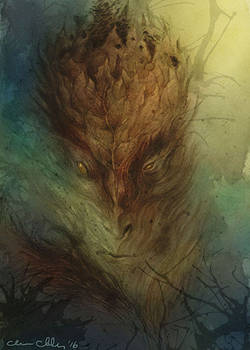 Old Man of the Forest2