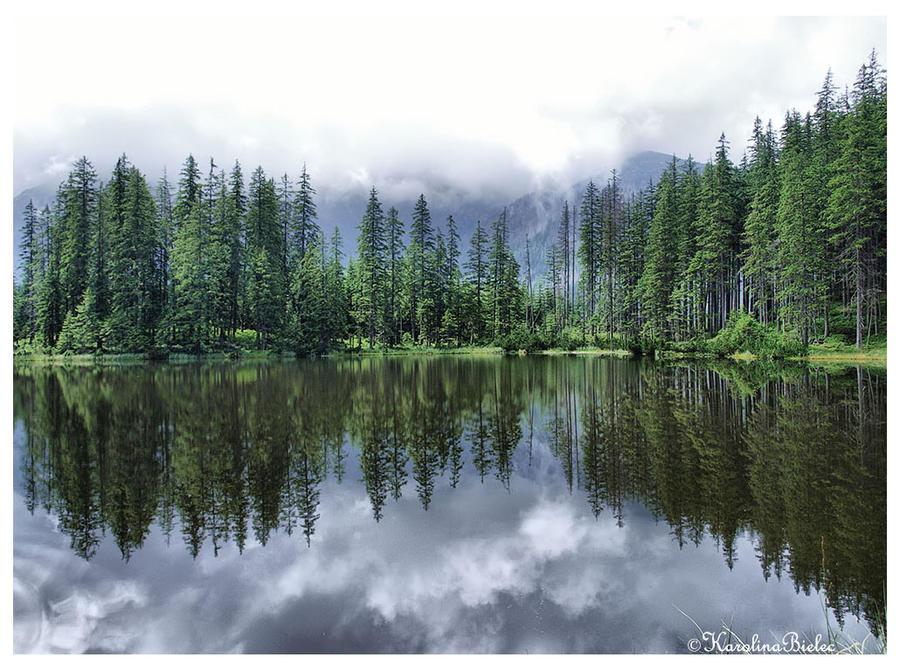 Smreczynski pond by carolinbie