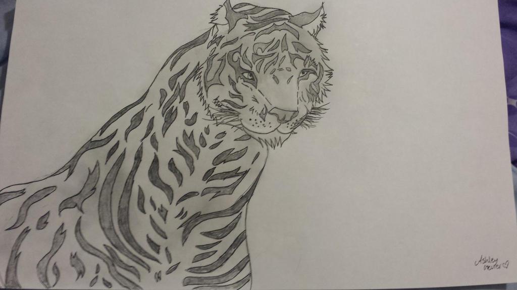 Tiger Sketch by cutelittlepikakitty