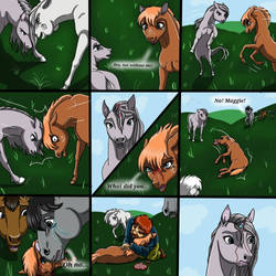 The Real Life Of Horses - Part 4