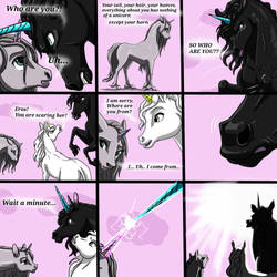 The Real Life Of Horses - Part 8