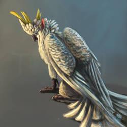 Cockatoo-Gryphon