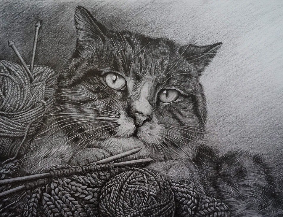 My cat by Olya-N-i-k