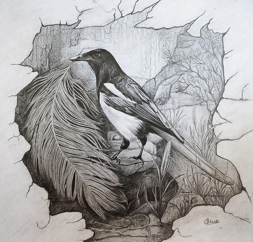Magpie by Olya-N-i-k